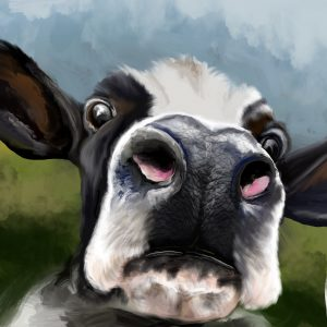 Hal the Cow, Art by Samantha